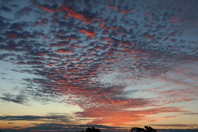 駿河湾の朝焼け