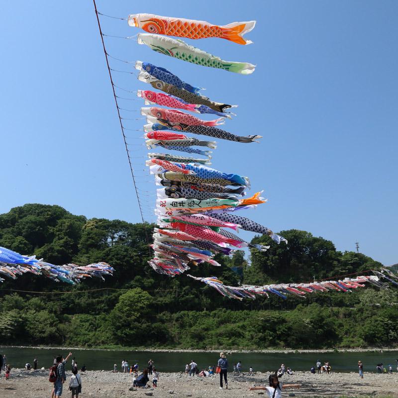 相模川鯉のぼり祭り